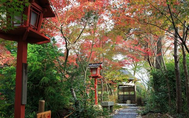 鍬山神社53