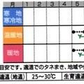 Photos: シカクマメ(四角豆)種まき時期