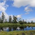 Photos: 松山湿原