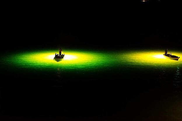 写真: ステージ~しらす漁