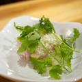 Photos: 蒸し鶏のネギソース
