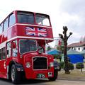 Photos: ロンドンバス@リトルワールド(3)