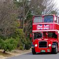 Photos: ロンドンバス@リトルワールド(5)