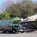 Photos: リトルワールド・園内周回バス(5)