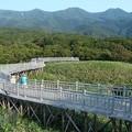 写真: 知床五湖高架木道