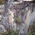 滝畑ダムの磨崖仏