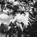 Apple Blossom 5-25-14