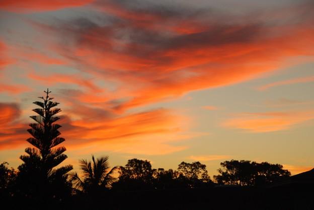 Photos: Before Sunrise 4-8-16