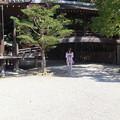 写真: 伊弉諾神宮にて