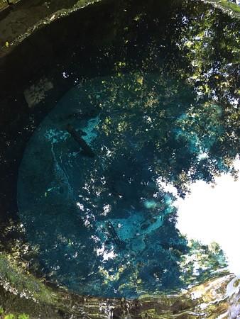 うっわー青くてきれい(潜りたい!)携帯じゃなくってイチデジで撮影したいですね!