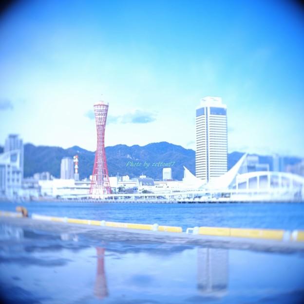 Photos: 20160214_神戸_02