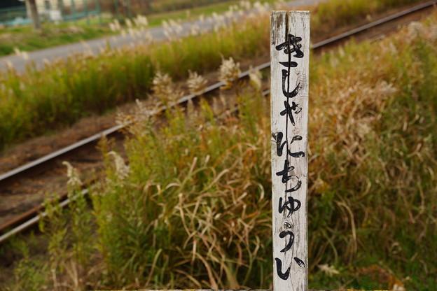 Photos: きしゃにちゅうい