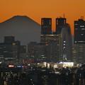 夕焼けの富士山と新宿副都心2