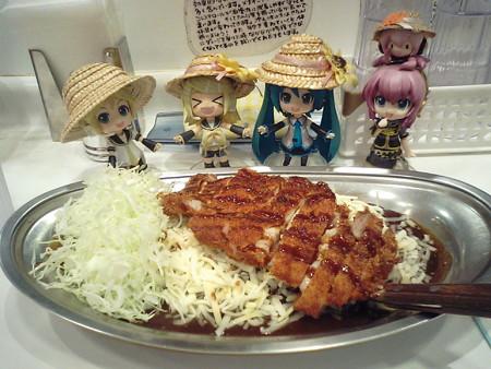 夕ご飯はゴーゴーカレー! ロースカツカレー(エコノミークラス) +...
