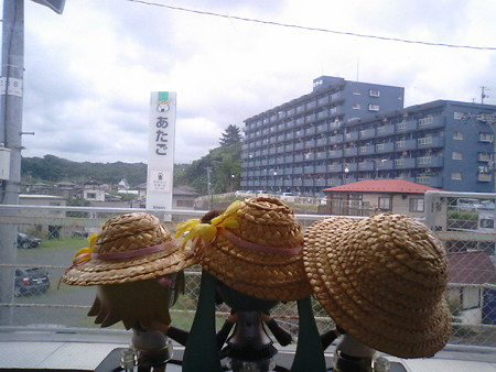 愛宕駅に停車。 リン:「宮城県の駅の駅名標には、必ずてっぺんにお...