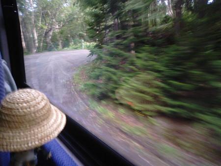 レン:「まさに大自然の原生林だなあ。道も狭いし。向こうから車来た...