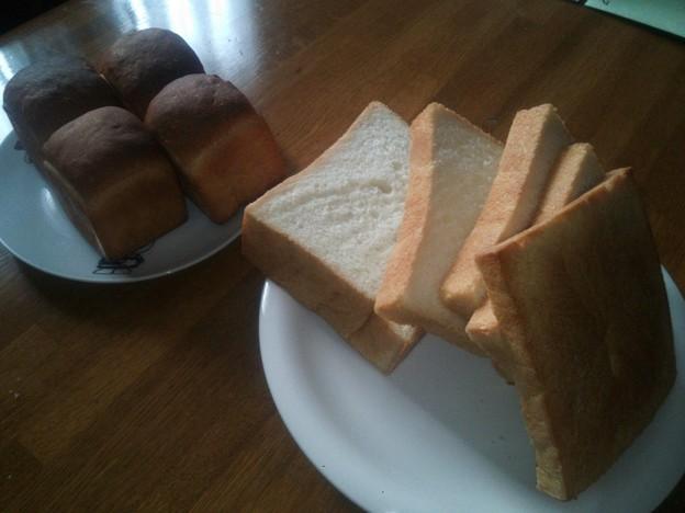 食パンと塩パン