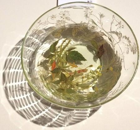 金魚酒_33