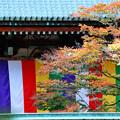 2015_1031_151240_根本中堂