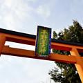 Photos: 2016_0130_142335_平野神社