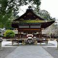 写真: 2016_0130_141640_拝殿