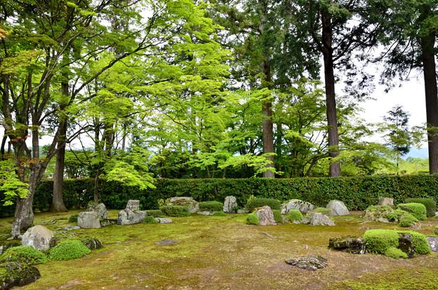 2016_0507_121843_円通寺の庭園