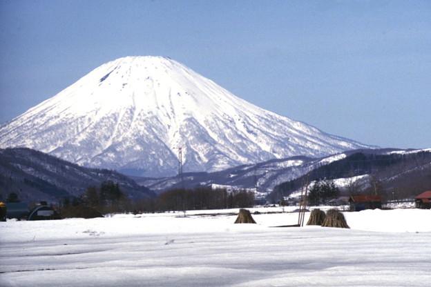蝦夷富士 羊蹄山