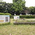 写真: 発掘旧墓_03 木棺墓