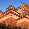 写真: 元旦の姫路城 閉城前
