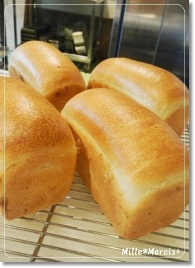 パン屋さんのパン教室で濃厚ミルク食パン