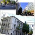 写真: みなとみらい、日本大通り