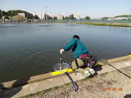 座間養魚場 2016Zカップ