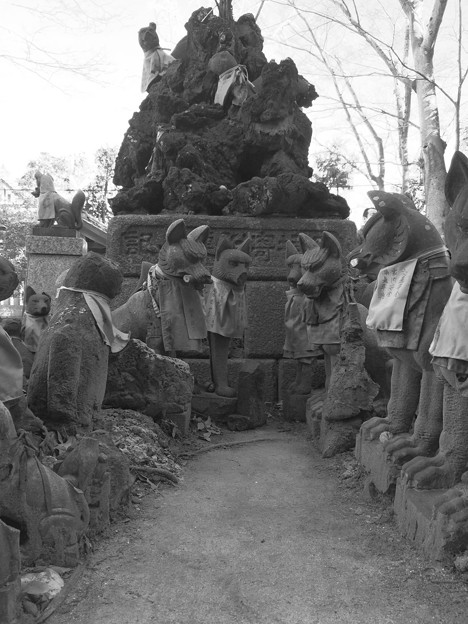 笠間稲荷神社 奉納狐その2