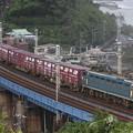 Photos: 大雨が通過した石橋山をEF66-21号機が定時で通過