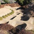 写真: 【山中城:西の丸障子堀コレクション3】西櫓跡からの障子堀。丸々とした植え込みが可愛らしい。 #静岡の旅2016