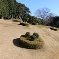 写真: 【山中城:二の丸跡】斜面になっている。 #静岡の旅2016