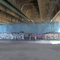 写真: 橋下