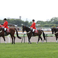 Photos: 函館競馬場 誘導馬_3(12/07/15)