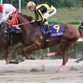 ワットプラケオ レース(第12回 ロータスクラウン賞)