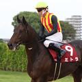 Photos: ミトラ レース後(第61回 産経賞オールカマー)