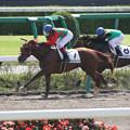 Photos: シゲルナガイワシ レース(15/10/03・1R)