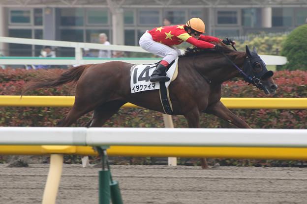 写真: イダクァイマ レース(15/05/09・2R)