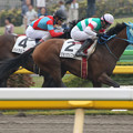 写真: ジョッセルフェルト レース(15/05/09・3R)