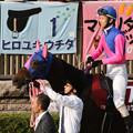 写真: メイショウマンボ パドック(第63回 府中牝馬ステークス)