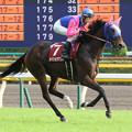 Photos: メイショウマンボ 返し馬(第63回 府中牝馬ステークス)