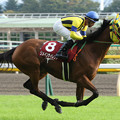 Photos: リメインサイレント 返し馬(第63回 府中牝馬ステークス)