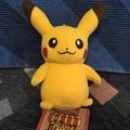 ポケモンセンターオリジナル マスコット PokemonMarket ピカチュウ