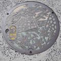 Photos: s1163_篠山市マンホール_カラー