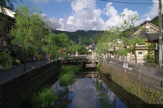 Photos: s1363_城崎温泉_大谿川の柳