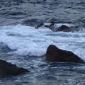 前原海岸 海その607 RIMG4956